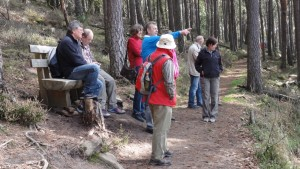 Wanderausflug durch den Pfälzer-Wald