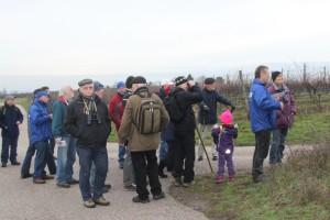 """Exkursion im Rahmen der """"Stunde der Wintervögel"""", Foto: Lore Breuer"""